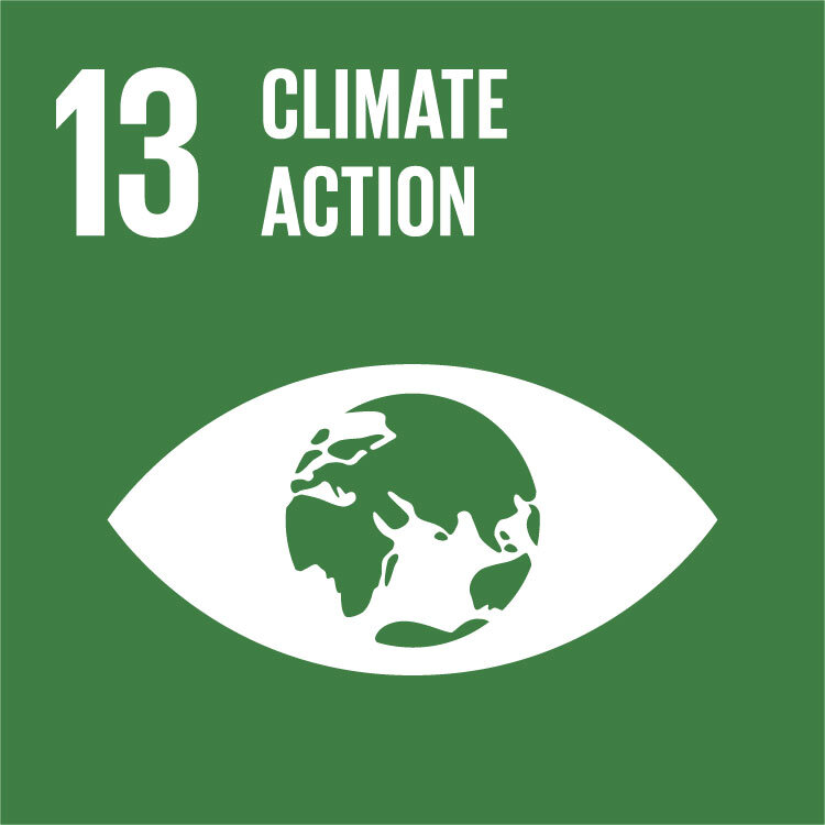 UN Climate Action icon